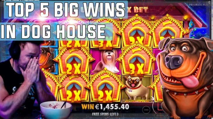 The Dog House  top 5 BIG WINS – Record win on slot
