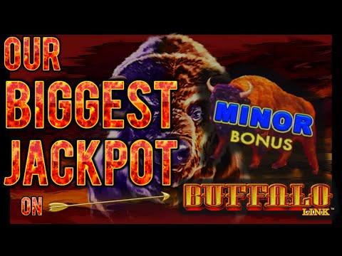 NEW SLOT ⭐️ HIGH LIMIT Buffalo Link MASSIVE HANDPAY JACKPOT ~ $50 Bonus Round Slot Machine Casino
