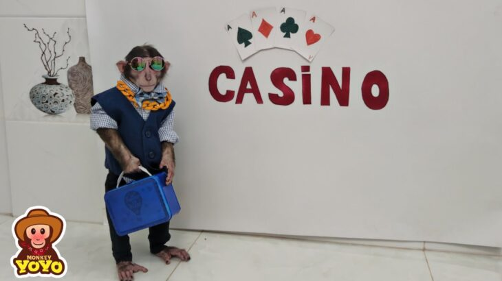 YoYo Jr goes to Casino and the result….?